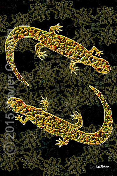 "Xavier Cortada, ""(Florida is…) Reticulated Flatwoods Salamanders,\"" archival ink on aluminum, 60\″ x 40\″, 2015."